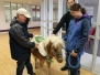 Graham Cracker the CTRH Therapy Pony Visits UCP