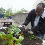 At Stepping Stones, adults with disabilities are planting a fresh vegetable garden to use in their favorite healthy recipes! - Stepping Stones Ohio