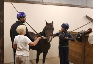 Stepping Stones and Cincinnati Therapeutic Riding & Horsemanship Partner to Empower Adults with Disabilities in Cincinnati, Ohio.